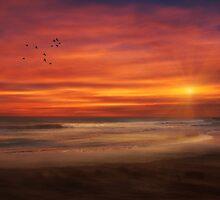 ASBURY PARK SUNSET by TOM YORK