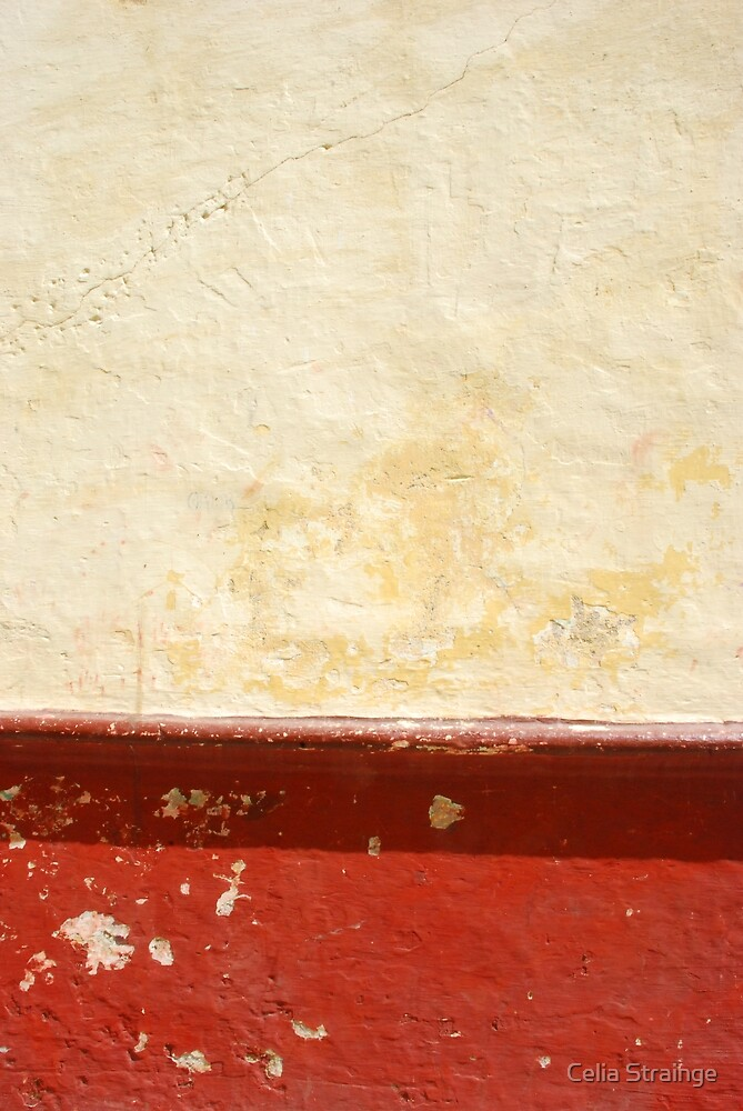 Wall Abstract - 3 by Celia Strainge