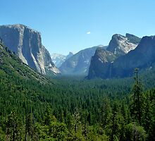 Yosemite National Park by Federica Gentile