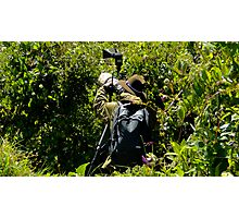 Bird Hunting Photographic Print