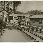 Welshpool and Llanfair Light Railway by Yampimon