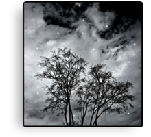 Branches to Heaven Canvas Print