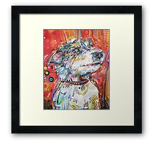 Jack Russell terrier mix painting - 2013 Framed Print