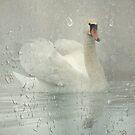 Enjoing rain... by EbyArts