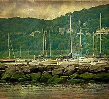 At Home in the Harbor - Atlantic Highlands  NJ by MotherNature
