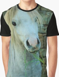 Welsh Pony Graphic T-Shirt