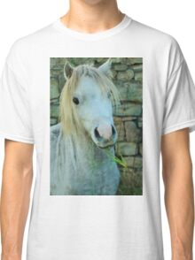 Welsh Pony Classic T-Shirt