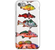 Fish, Fish, Fish iPhone Case/Skin