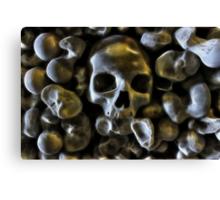 Good Bone Structure Canvas Print