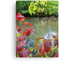 Fowl Weather Canvas Print