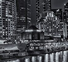Melbourne in Mono by Pauline Tims