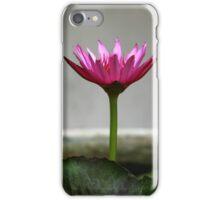 Temple Lotus iPhone Case/Skin