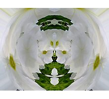 Kaleidoscope in a Mirror Photographic Print