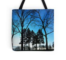 Six Shy Girls Tote Bag
