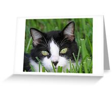 Annie-Dinner time please! Greeting Card