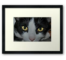 """ Blink "" Framed Print"