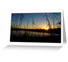 A Swamp sillhouette sunrise Greeting Card
