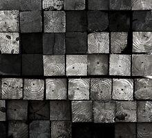 Crosswood by DawnPatrol89