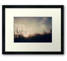 . carefree summer morning . Framed Print