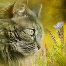 Garden dreams ... by Lynn Starner