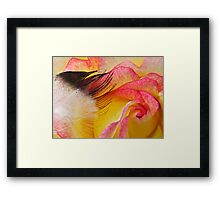 Touch a Rose Framed Print