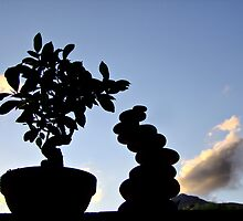 "bonsai by Antonello Incagnone ""incant"""