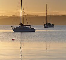 Sunrise at Marieville Esplanade, Sandy Bay, Tasmania #2 by Chris Cobern