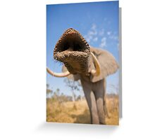 Trunk call Greeting Card