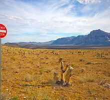 Do Not Enter sign, Red Rock Valley, Las Vegas, USA by Sharpeyeimages