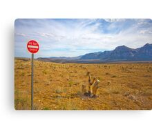 Do Not Enter sign, Red Rock Valley, Las Vegas, USA Canvas Print