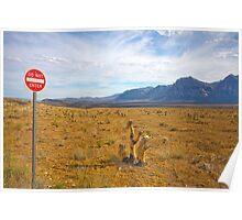 Do Not Enter sign, Red Rock Valley, Las Vegas, USA Poster