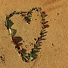 (Another) Heart Installation on Darwin Beach by Carol James