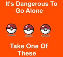 It's Dangerous To Go Alone. Here Take One Of These. by ShaneReid2
