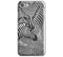 Zebra Flight iPhone Case/Skin