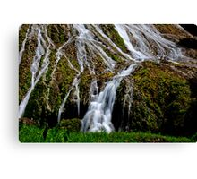 Flowing waterfall rivulets Canvas Print