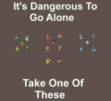 It's Dangerous To Go Alone! by ShaneReid2