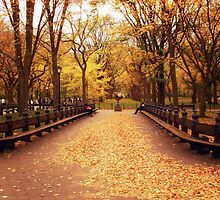 Autumn Romance - Central Park by Vivienne Gucwa