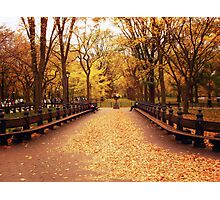 Autumn Romance - Central Park Photographic Print