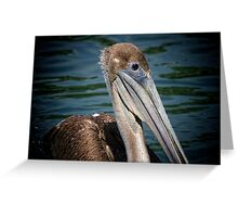 Brown Pelican Profile Greeting Card