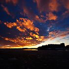 Waxholm Castle  by Boris Vanrillaer