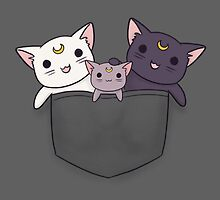 Pocket Kitties (All 3) by LiRoVi