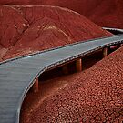 Red Earth Trail by Marcus Angeline