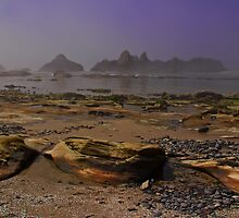 Misty Morning On The Seal Rocks by Marcus Angeline