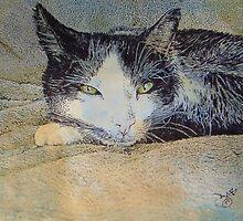 Green Eyes by Diana Cardosi-Bussone