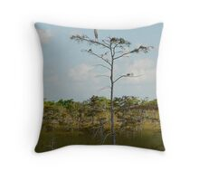 Outlook Post Throw Pillow