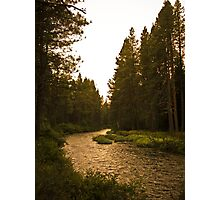 river highway Photographic Print