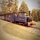 Minature Train - Bicton Gardens by Tim Topping