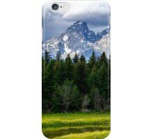Mountain vs. Meadow iPhone Case/Skin
