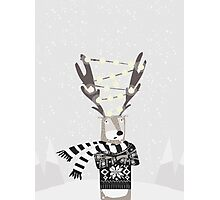 Christmas Bright Reindeer  Photographic Print