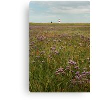 Cycling the sea wall Canvas Print